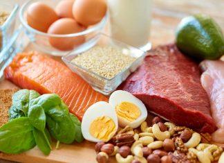 proteine nourriture